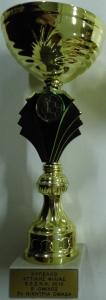 Διασυλλογικό Κύπελλο Αττικής Φιλίας Σκάκι 2010 Β΄ Όμιλος, 3η θέση